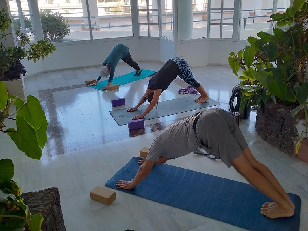Yoga4freedom_Adho-Mukha-Svanasana_PlayaParaiso-classes