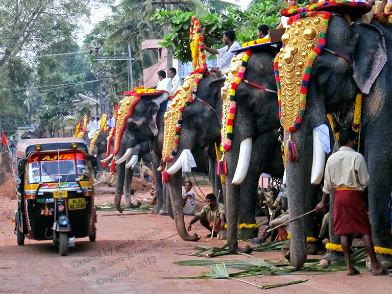 India; Kerala; Indu parade; elefanti; elephant; animal abuse