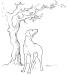 illustrazioni-BN-cane