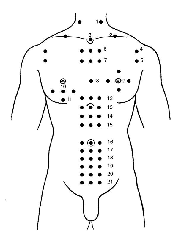 illustrazioni-agopuntura-corpo anteriore2